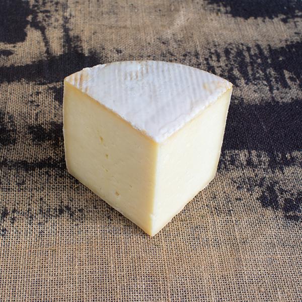 cuña de queso de oveja curado en manteca
