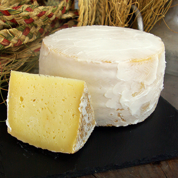 queso de oveja curado en manteca boc