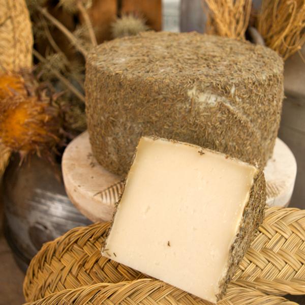 queso de oveja curado al romero boc